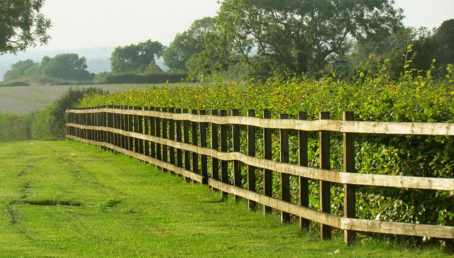 Inspiracje #5 Nieszablonowe ogrodzenia